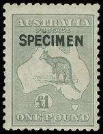 S Australia - Lot No.111 - Collections