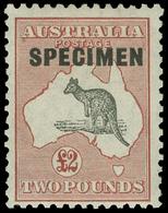 S Australia - Lot No.117 - Collections