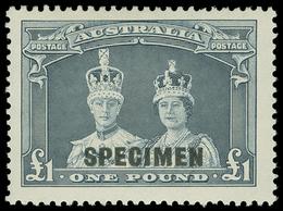 * Australia - Lot No.124 - Collections