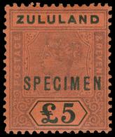 S Zululand - Lot No.1192 - South Africa (...-1961)