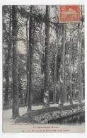 (RECTO / VERSO) LA MONTAGNE NOIRE EN 1911 - N° 32 - LA RIGOLE  PRES LAMPY - Ed. LABOUCHE FRERES - BEAU CACHET - CPA - France
