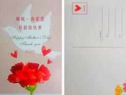 2019 Mother Day Postal Card Carnation Flower Dove Bird - Muttertag