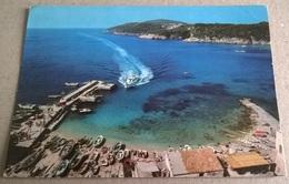 TREMITI ARRIVO ALISCAFO SUL PORTICCIOLO DI S. NICOLA (58) - Barche
