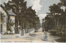 LA BAULE - ENTREE DU BOIS D'AMOUR - BIEN ANIMEE - VERS 1900 - La Baule-Escoublac