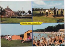 Schoonloo (Dr.) - Kampeerboerderij 'Alberdina Hoeve' : VOLLEYBAL - (Holland) - Volleybal