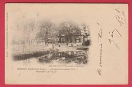 Lommel - Grande Barrière 1709 - Derrière La Villa - 1902 ( Verso Zien ) - Lommel