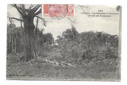 AFRIQUE OCCIDENTALE FRANCAISE... GUINEE FRANCAISE. Forêt De Palmiers - Guinée Française