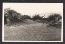 CPA PHOTO 13 - CAMARGUE SAINTES-MARIES DE LA MER ? - TB PLAN Cabane De Gardian Prsè Des Dunes PHOTO GEORGE - France