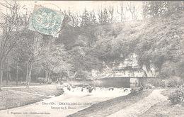 X4183 COTE D' OR CHATILLON SUR SEINE SOURCE DE LA DOUIX - Chatillon Sur Seine