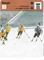 GF801 - FICHE EDITION RENCONTRE - BANDY - Sports D'hiver