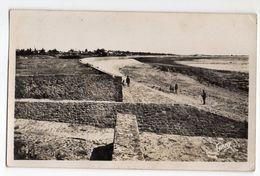 Ile De Noirmoutier--1949--LA GUERINIERE--La Plage  (petite Animation ) --timbre --cachet  Noirmoutier-85 - Ile De Noirmoutier