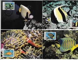 Maldives - Faune WWF - 4 Maximum Cards - FISH - Maximum Cards