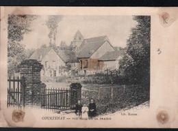 45, Courtenay, Vue Prise De La Prairie - Courtenay