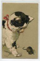CHATS CARTE GAUFREE Chat Observant Le Rat écrite 1903 Timb Serie 2285 Théo Stroefer Nurnberg    D07 2019 - Chats