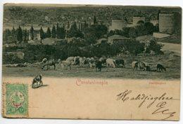 TURQUIE CONSTANTINOPLE Troupeau De Moutons Paturage écrite Timbrée Début 1900 Dos Non Divisé    D07 2019 - Turquie