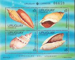 Uruguay  1995  Shells  M/S - Uruguay