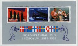 """PIA  -  FAROER  -  1993  : 10° Anniversario Della """"Casa Del Nord"""" -Arti E Cultura  -  (Yv Bf 6) - Isole Faroer"""