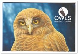 Australië 2017, Postfris MNH, Owls, ( Prestigebooklet ) - Boekjes