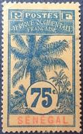 R3536/1214 - 1906 - COLONIES FR. - SENEGAL - N°43 ☉ - CàD - Sénégal (1887-1944)