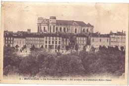 CPA - Montauban-  La Cathédrale Notre Dame - La Promenade Ingres - Montauban