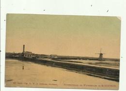 Schouwers - Stoomgemaal En Watermolen , Gelopen 1910 - Zonder Classificatie