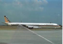 TransContinental DC8  N820TC At Parigi Orly Trans Continental - 1946-....: Era Moderna