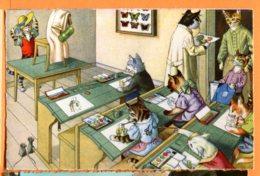 SPR132, Chat, Cat, Katze, Souris, Mouse, Ecole, Schule, School, Papillon, Butterfly, Non Circulée - Gekleidete Tiere