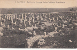 Carthage - Basilique De Damous-el-Karita (Fouilles Des Pères Blancs) - Tunisia