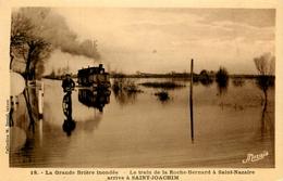 La Grande Brière Inondée - Le Train De La Roche Bernard à St Nazaire Arrivée à St Joachim - Ligne Chemin De Fer - Saint-Joachim