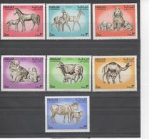 SHARJAH (Arabie Du Sud-Est) - Faune - Animaux Divers Et Petits : Cheval, Bovin, Chat, Chien, Ovin, Chameau, - Briefmarken
