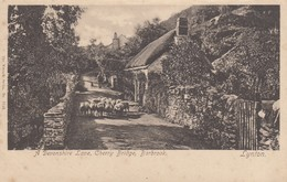 Postcard A Devonshire Lane Cherry Bridge Barbrook Lynton Devon Farming Scene [ Wrench ] My Ref  B13094 - Lynmouth & Lynton