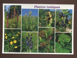 Plantes Toxiques - Giftige Pflanzen