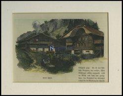 Berner Bauernhäuser, Kolorierter Holzstich Um 1880 - Lithographien