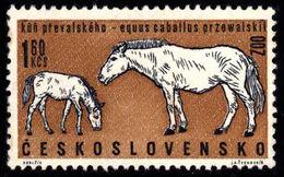 Czechoslovakia Tschechoslowakei Tchécoslovaquie 1962 ** MNH Przewalski Wild Horse Wildes Pferd Cheval Sauvage - Horses
