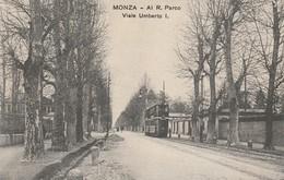 MONZA -VIALE UMBERTO I - Monza