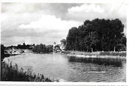 CPA-1950-77-TRILPORT Sur MARNE-TBE - Autres Communes
