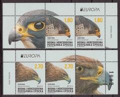 Bosnia Serbia 2019 Europa CEPT National Birds Fauna Eagles Falcon Aquila Chryseatos Falco Peregrinus Middle Row MNH - Adler & Greifvögel