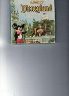 1 Film De Walt Disney Color - En Super 8 - A DAY AT Disneyland - Made U.S.A. - - Other Collections