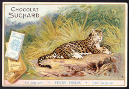 CHROMO Chocolat SUCHARD Le Jaguar       Felis Onca  Animaux  Animals  Serie 75 - Suchard