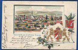 CHATEAU-SALINS   Carte Gauffrée           écrite En 1901 - Chateau Salins