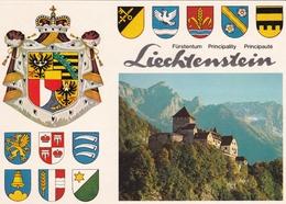Liechtenstein Schloss Vaduz Postcard Unused - Liechtenstein