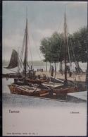 BELGIQUE BELGIE Cpa Postcard NELS - TAMISE  TEMSCHE TENSE - L'Escaut - Temse