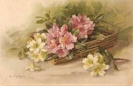"""Catherina Klein. Beautiful Flowers In A Basket"" Nice Antique German Postcard - Klein, Catharina"
