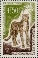 MINT  STAMPS Mauritania - Animals  -  1963 - Mauritania (1960-...)