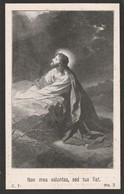 Eulalie Franck-maldegem 1864-eekloo 1916 - Devotion Images