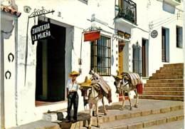 MALAGA  MIJAS  FRCR91377 - Spain