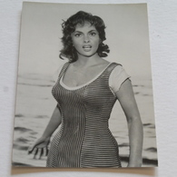 GINA LOLLOBRIGIDA - Carte Postale Maxi ( A5 : 21 X 15 ) - Photo Archiv Filmpress Zurich - Attori