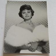 SOPHIA LOREN- Carte Postale Maxi ( A5 : 21 X 15 ) - Archive Filmpress ZURICH - Attori