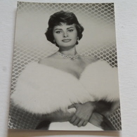 SOPHIA LOREN- Carte Postale Maxi ( A5 : 21 X 15 ) - Archive Filmpress ZURICH - Actors