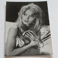 BRIGITTE BARDOT  - Carte Postale Maxi ( A5 : 21 X 15 ) - Photo Privat - Acteurs